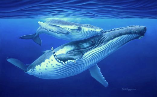 painting of humpback whale and calf by Renata Bruynzeel