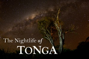 A starry night long exposure photograph in Tonga, photographed by Scott Portelli on tour with Swimming with Gentle Giants